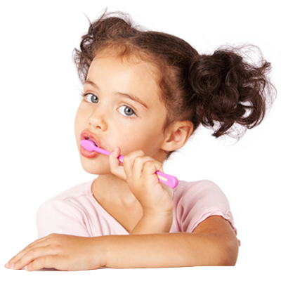 Your child should see a dentist by age one or within six months of their first tooth appearing